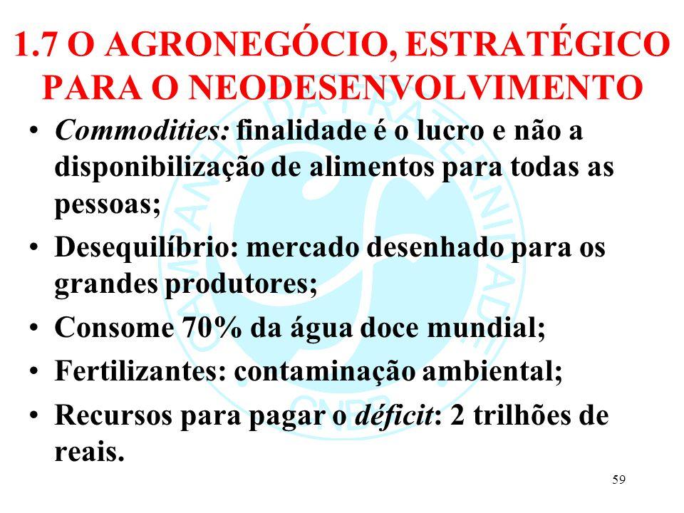 1.7 O AGRONEGÓCIO, ESTRATÉGICO PARA O NEODESENVOLVIMENTO Commodities: finalidade é o lucro e não a disponibilização de alimentos para todas as pessoas
