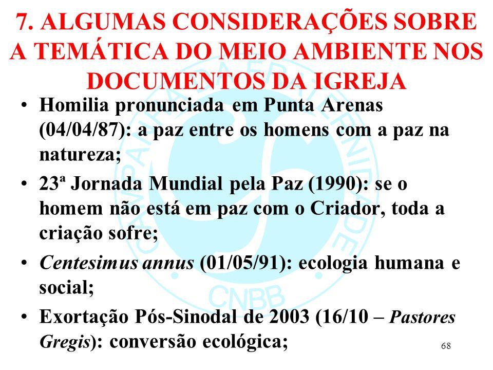 7. ALGUMAS CONSIDERAÇÕES SOBRE A TEMÁTICA DO MEIO AMBIENTE NOS DOCUMENTOS DA IGREJA Homilia pronunciada em Punta Arenas (04/04/87): a paz entre os hom