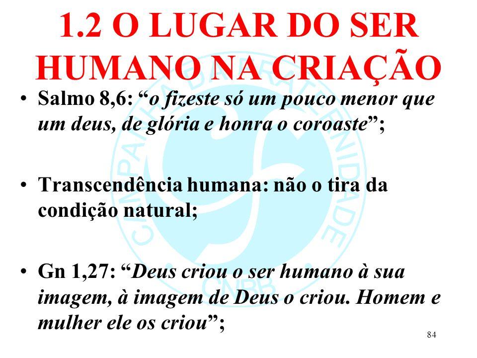 1.2 O LUGAR DO SER HUMANO NA CRIAÇÃO Salmo 8,6: o fizeste só um pouco menor que um deus, de glória e honra o coroaste; Transcendência humana: não o ti
