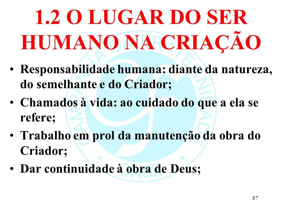 1.2 O LUGAR DO SER HUMANO NA CRIAÇÃO Responsabilidade humana: diante da natureza, do semelhante e do Criador; Chamados à vida: ao cuidado do que a ela
