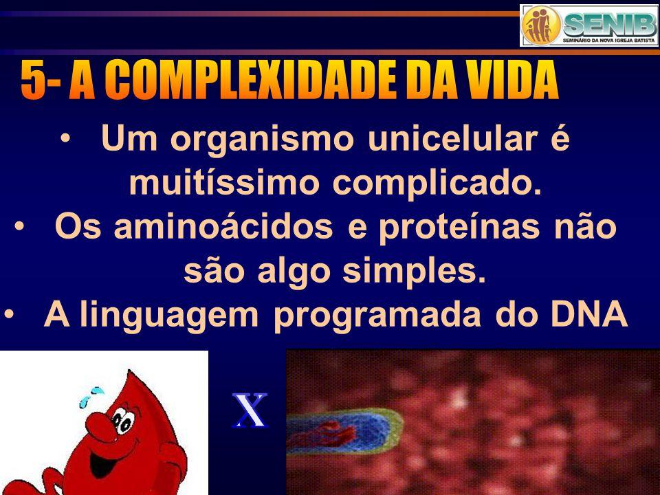 Um organismo unicelular é muitíssimo complicado. Os aminoácidos e proteínas não são algo simples. A linguagem programada do DNA