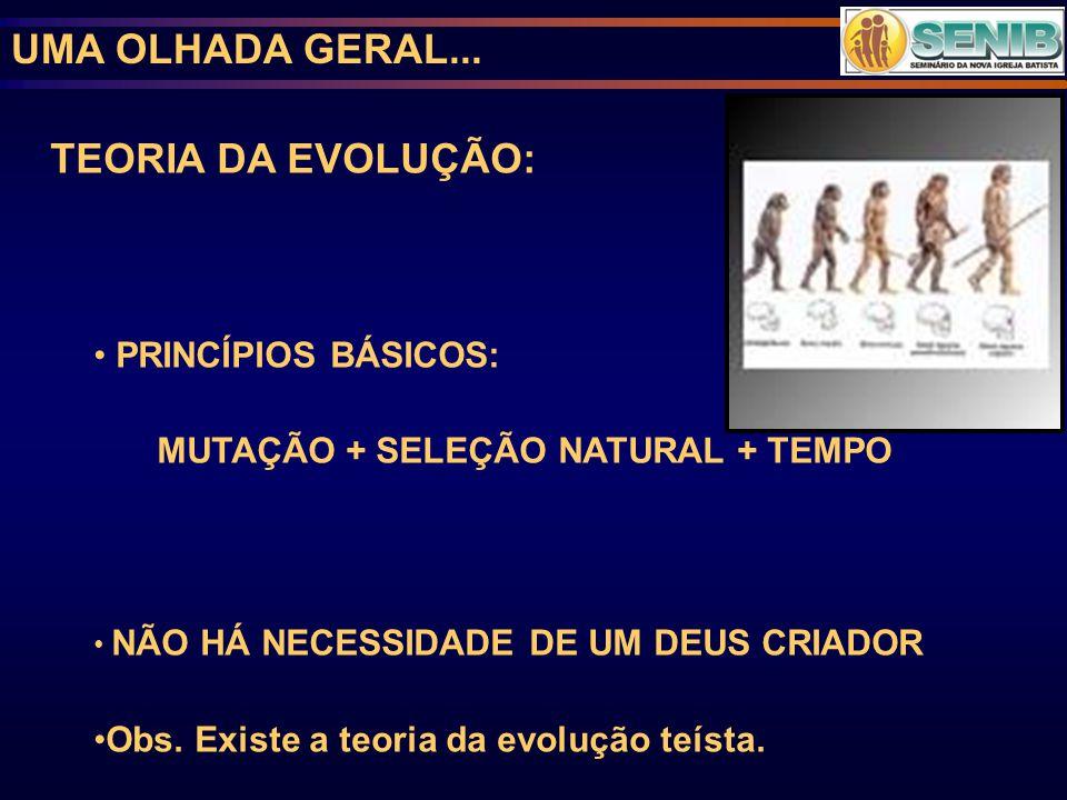 UMA OLHADA GERAL... TEORIA DA EVOLUÇÃO: PRINCÍPIOS BÁSICOS: MUTAÇÃO + SELEÇÃO NATURAL + TEMPO NÃO HÁ NECESSIDADE DE UM DEUS CRIADOR Obs. Existe a teor