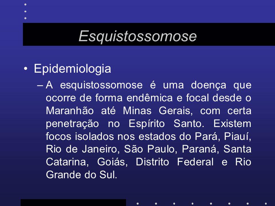 Epidemiologia –A esquistossomose é uma doença que ocorre de forma endêmica e focal desde o Maranhão até Minas Gerais, com certa penetração no Espírito