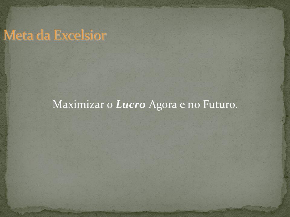 Maximizar o Lucro Agora e no Futuro.
