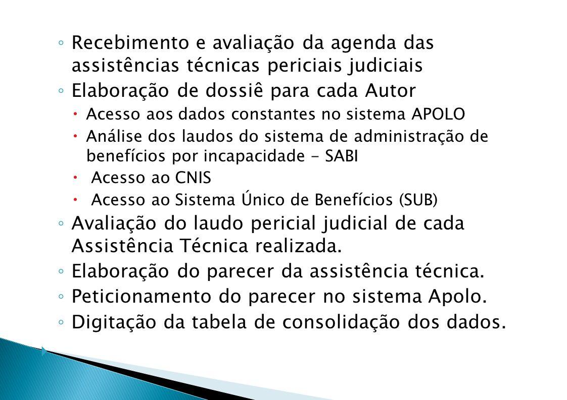Recebimento e avaliação da agenda das assistências técnicas periciais judiciais Elaboração de dossiê para cada Autor Acesso aos dados constantes no sistema APOLO Análise dos laudos do sistema de administração de benefícios por incapacidade - SABI Acesso ao CNIS Acesso ao Sistema Único de Benefícios (SUB) Avaliação do laudo pericial judicial de cada Assistência Técnica realizada.