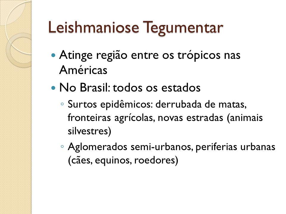 Leishmaniose Tegumentar Atinge região entre os trópicos nas Américas No Brasil: todos os estados Surtos epidêmicos: derrubada de matas, fronteiras agr