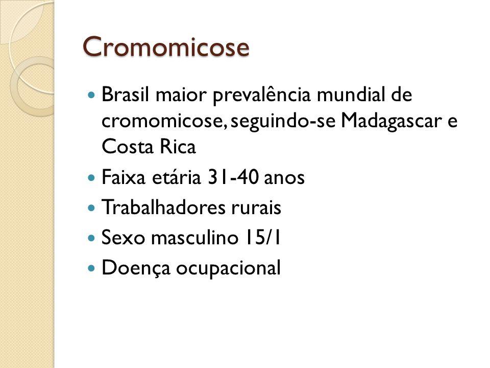 Cromomicose Brasil maior prevalência mundial de cromomicose, seguindo-se Madagascar e Costa Rica Faixa etária 31-40 anos Trabalhadores rurais Sexo mas