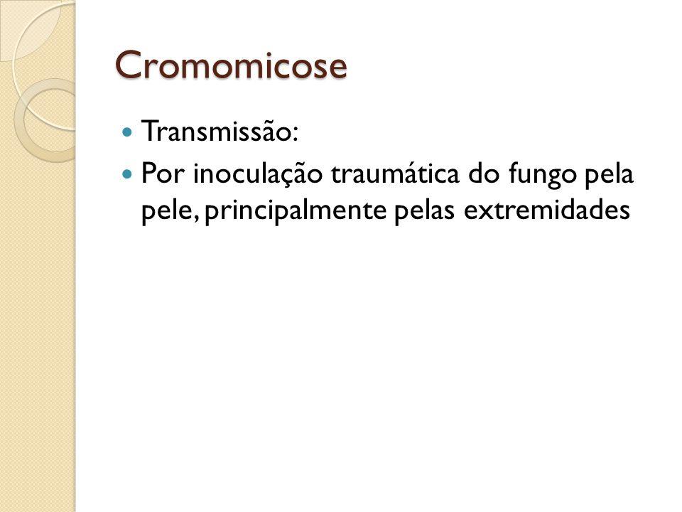 Cromomicose Transmissão: Por inoculação traumática do fungo pela pele, principalmente pelas extremidades