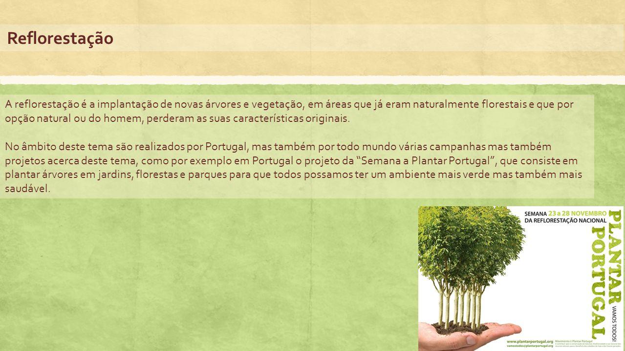Reflorestação A reflorestação é a implantação de novas árvores e vegetação, em áreas que já eram naturalmente florestais e que por opção natural ou do