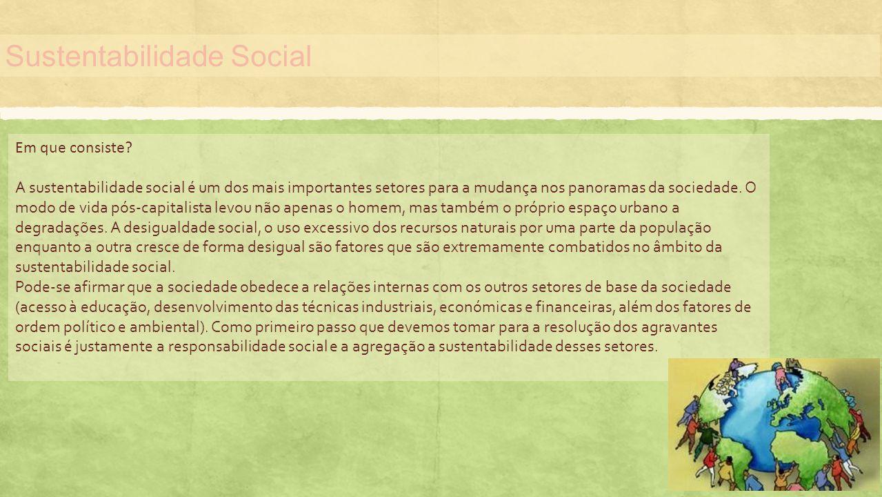 Sustentabilidade Social Em que consiste? A sustentabilidade social é um dos mais importantes setores para a mudança nos panoramas da sociedade. O modo