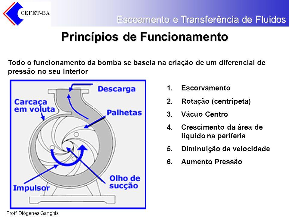 Profº Diógenes Ganghis Princípios de Funcionamento Todo o funcionamento da bomba se baseia na criação de um diferencial de pressão no seu interior 1.E