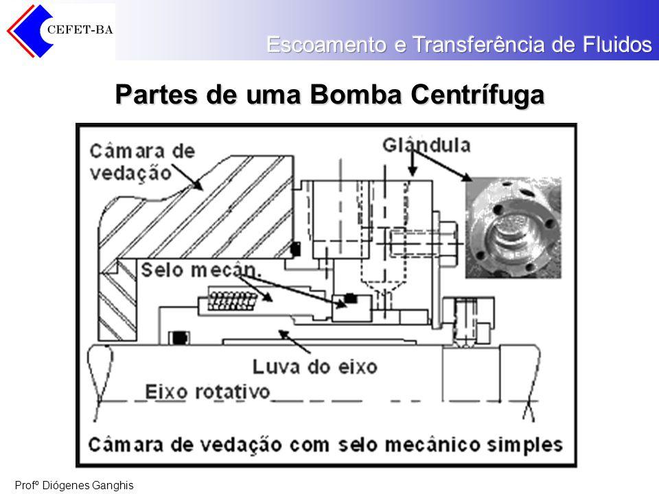 Profº Diógenes Ganghis Partes de uma Bomba Centrífuga
