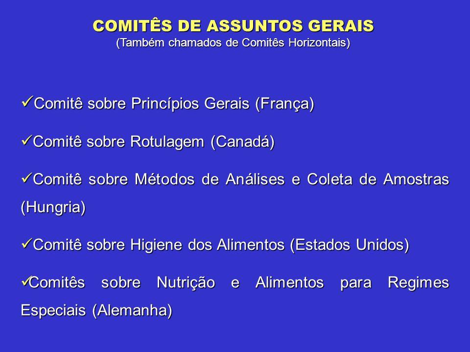 COMITÊS DE ASSUNTOS GERAIS (Também chamados de Comitês Horizontais) Comitê sobre Princípios Gerais (França) Comitê sobre Princípios Gerais (França) Co