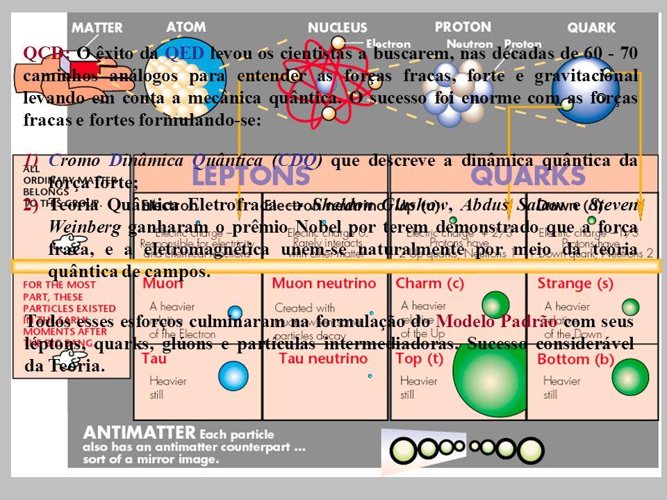1)Cromo Dinâmica Quântica (CDQ) que descreve a dinâmica quântica da força forte; 2)Teoria Quântica Eletrofraca Sheldon Glashow, Abdus Salam e Steven Weinberg ganharam o prêmio Nobel por terem demonstrado que a força fraca, e a eletromagnética unem-se naturalmente por meio da teoria quântica de campos.