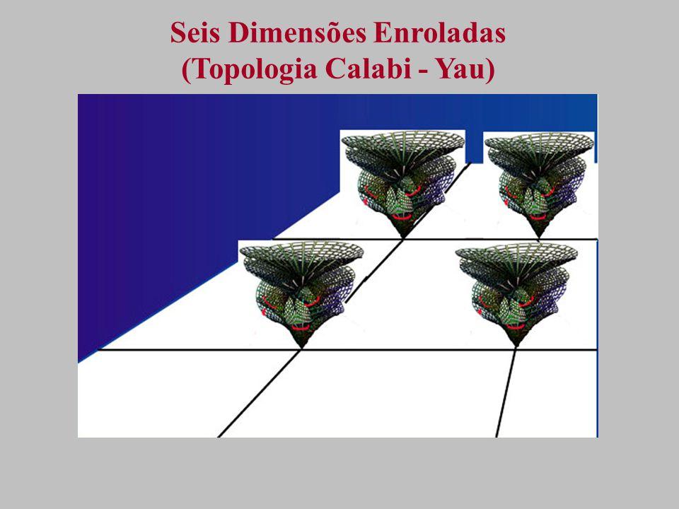 Seis Dimensões Enroladas (Topologia Calabi - Yau)