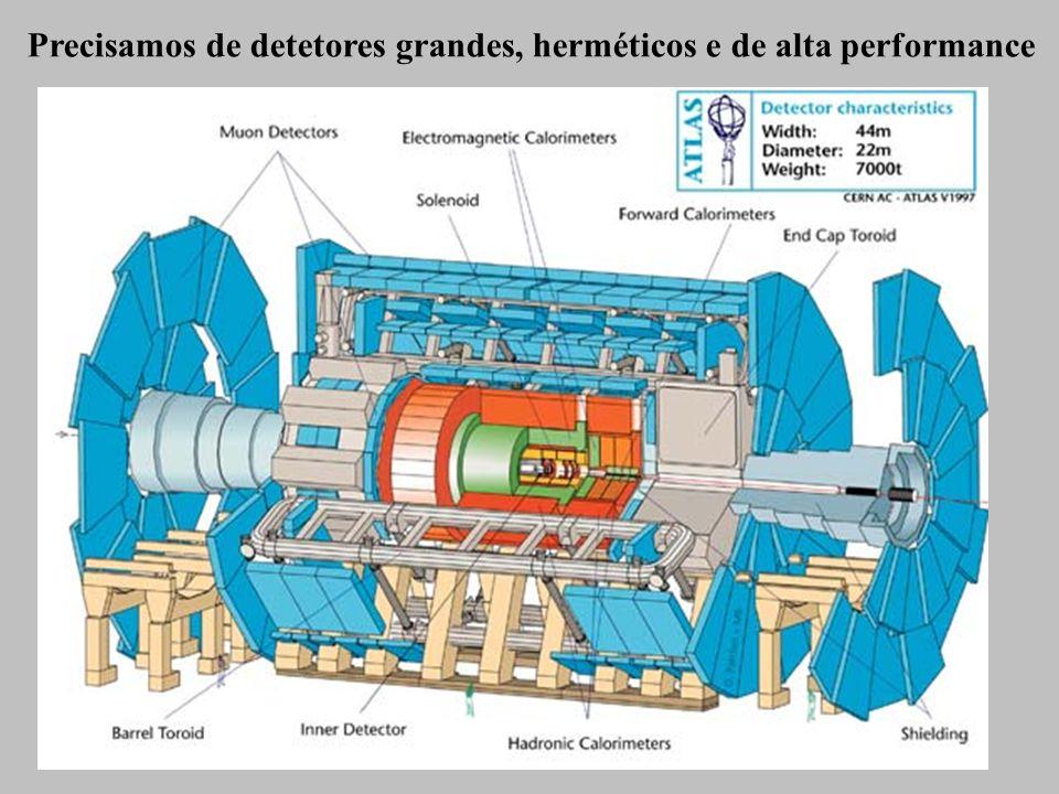 Precisamos de detetores grandes, herméticos e de alta performance