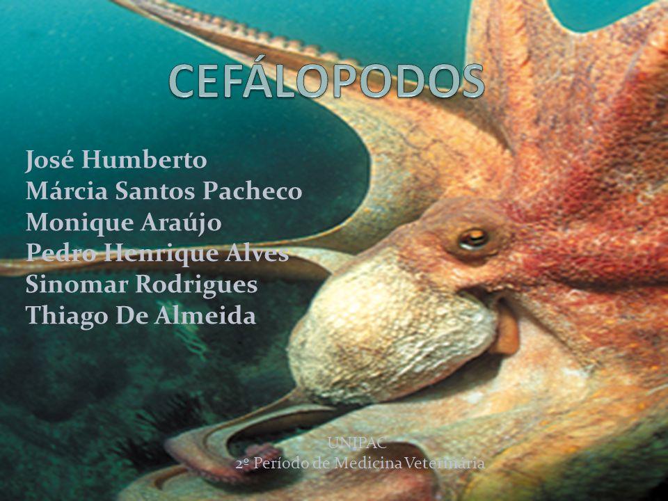 José Humberto Márcia Santos Pacheco Monique Araújo Pedro Henrique Alves Sinomar Rodrigues Thiago De Almeida UNIPAC 2º Período de Medicina Veterinária