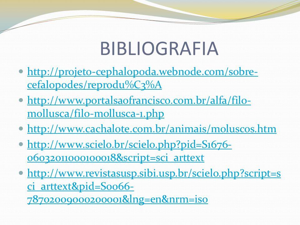 BIBLIOGRAFIA http://projeto-cephalopoda.webnode.com/sobre- cefalopodes/reprodu%C3%A http://projeto-cephalopoda.webnode.com/sobre- cefalopodes/reprodu%