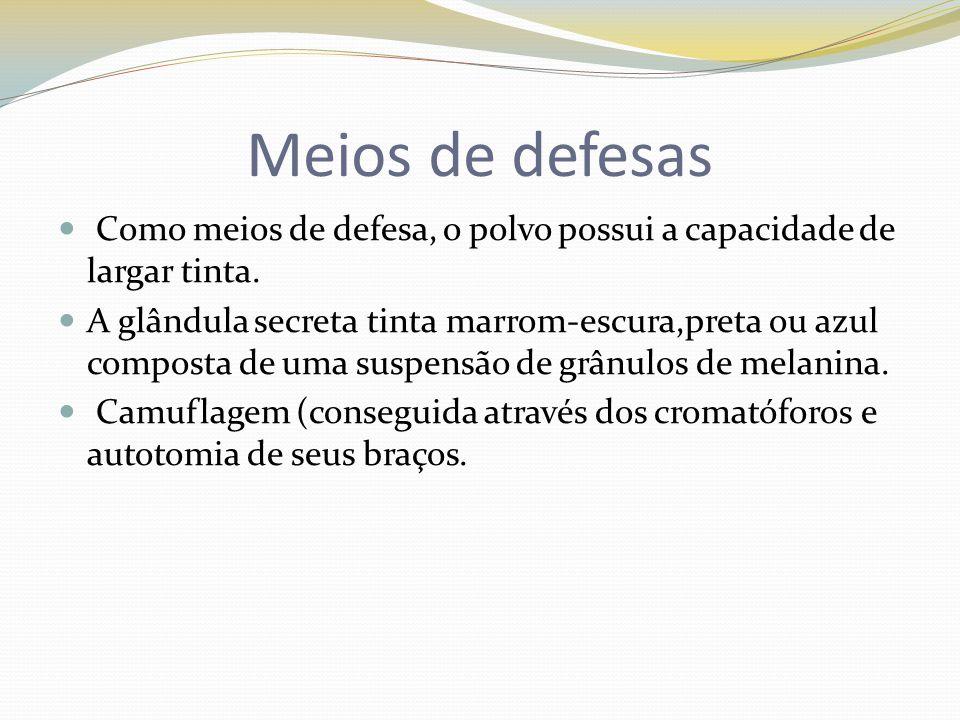 Meios de defesas Como meios de defesa, o polvo possui a capacidade de largar tinta. A glândula secreta tinta marrom-escura,preta ou azul composta de u