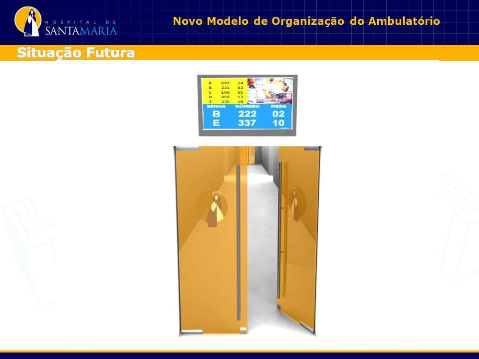 Novo Modelo de Organização do Ambulatório Situação Futura