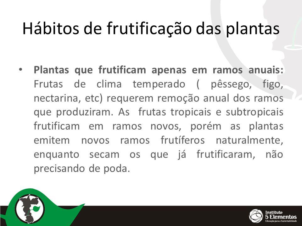 Hábitos de frutificação das plantas Plantas que frutificam apenas em ramos anuais: Frutas de clima temperado ( pêssego, figo, nectarina, etc) requerem remoção anual dos ramos que produziram.