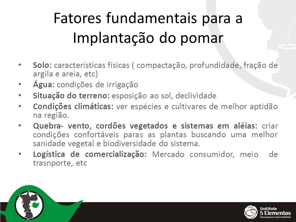 Implantação do pomar Preparo da área: baseado nos resultado da análise de solo fazer a remineralização da área atraves de pós de rochas, calcarios, fosfato natural,etc.