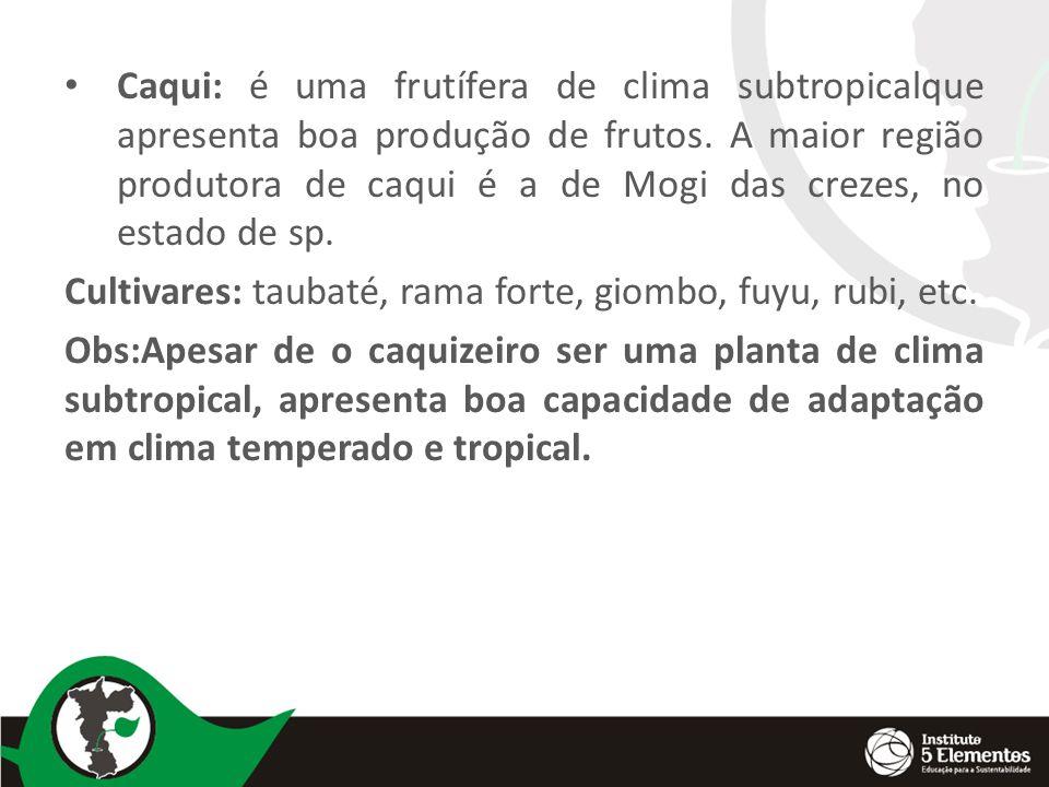 Caqui: é uma frutífera de clima subtropicalque apresenta boa produção de frutos.