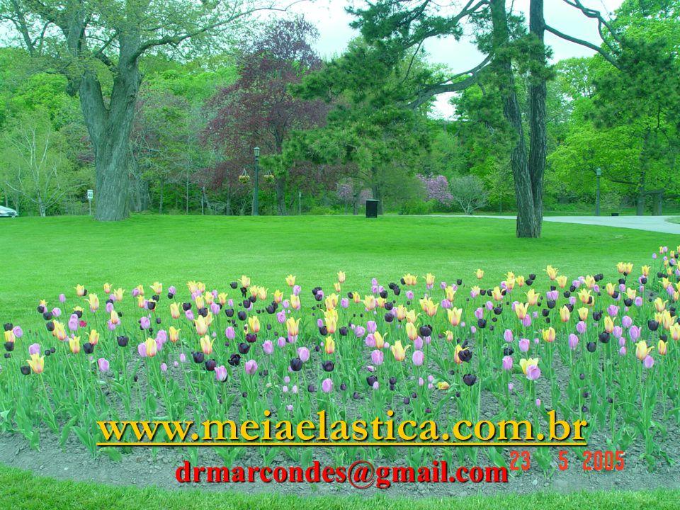 www.meiaelastica.com.br drmarcondes@gmail.com