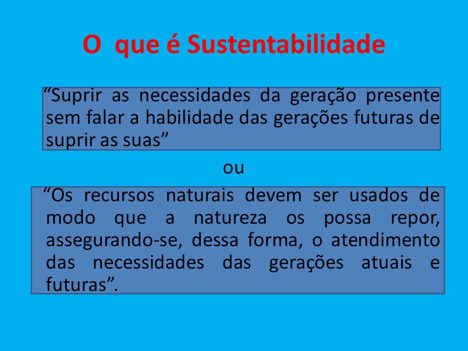O que é Sustentabilidade Suprir as necessidades da geração presente sem falar a habilidade das gerações futuras de suprir as suas ou Os recursos natur