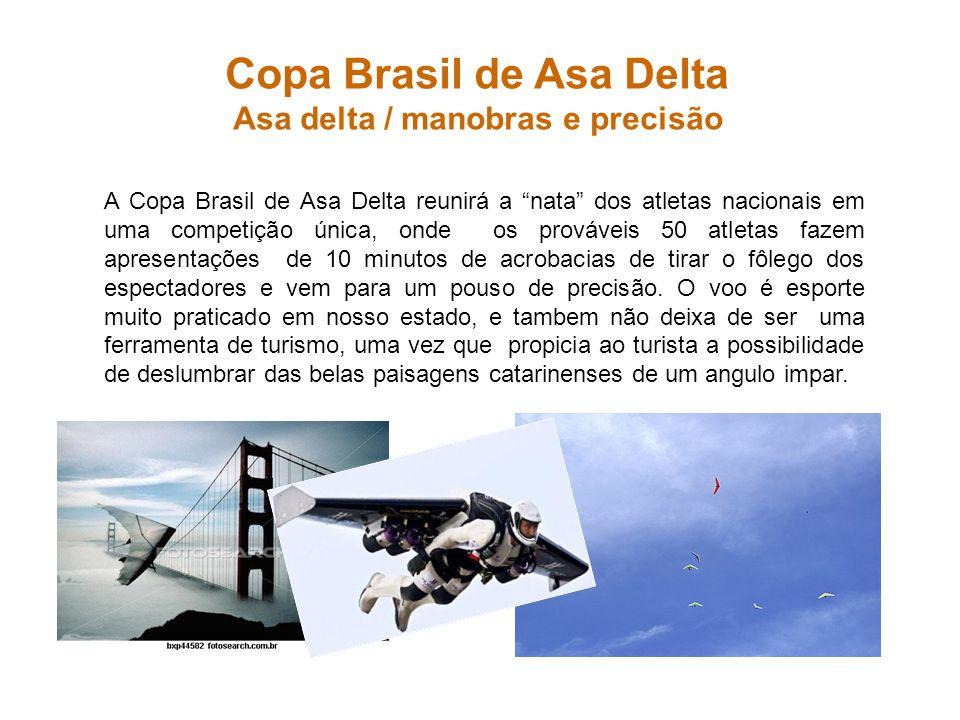 Copa Brasil de Asa Delta Asa delta / manobras e precisão A Copa Brasil de Asa Delta reunirá a nata dos atletas nacionais em uma competição única, onde
