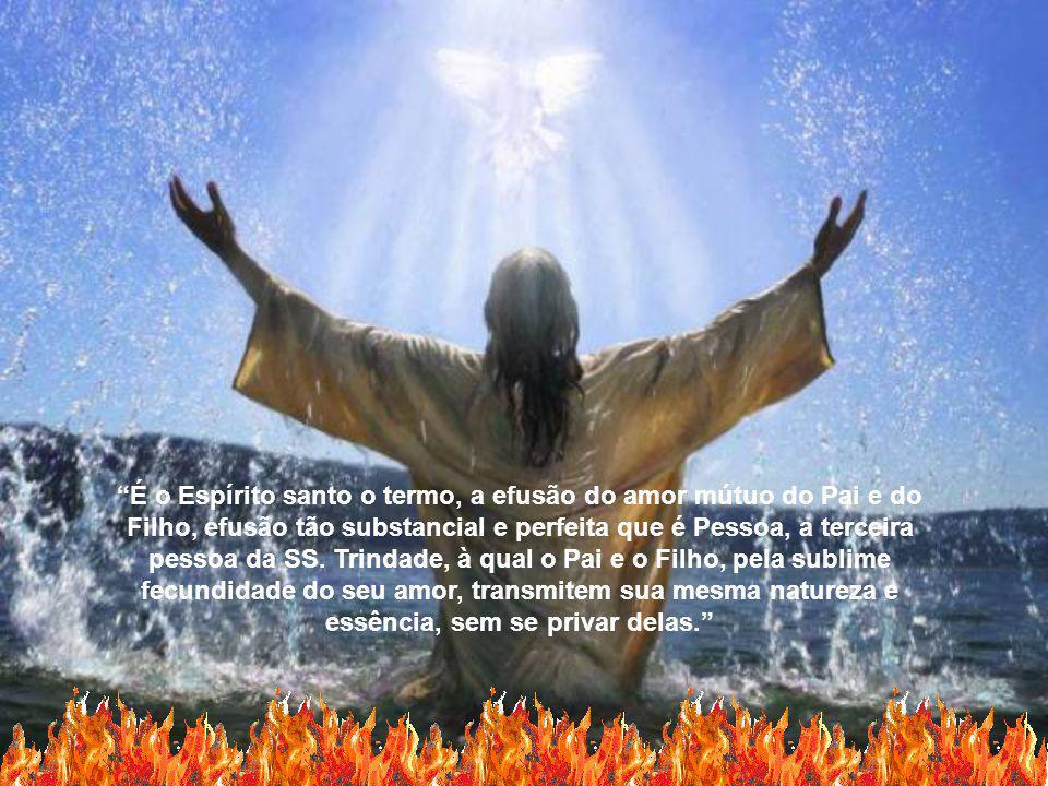 A Eficácia do Espírito Santo, a sua força, o seu poder nos impulsiona para testemunhar Cristo no meio do mundo.