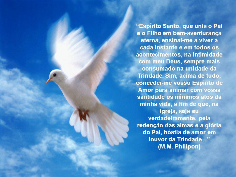 O Espírito Santo é mistério da bondade e da suavidade, da condescendência e da familiaridade de Deus e também mistério de quietude.