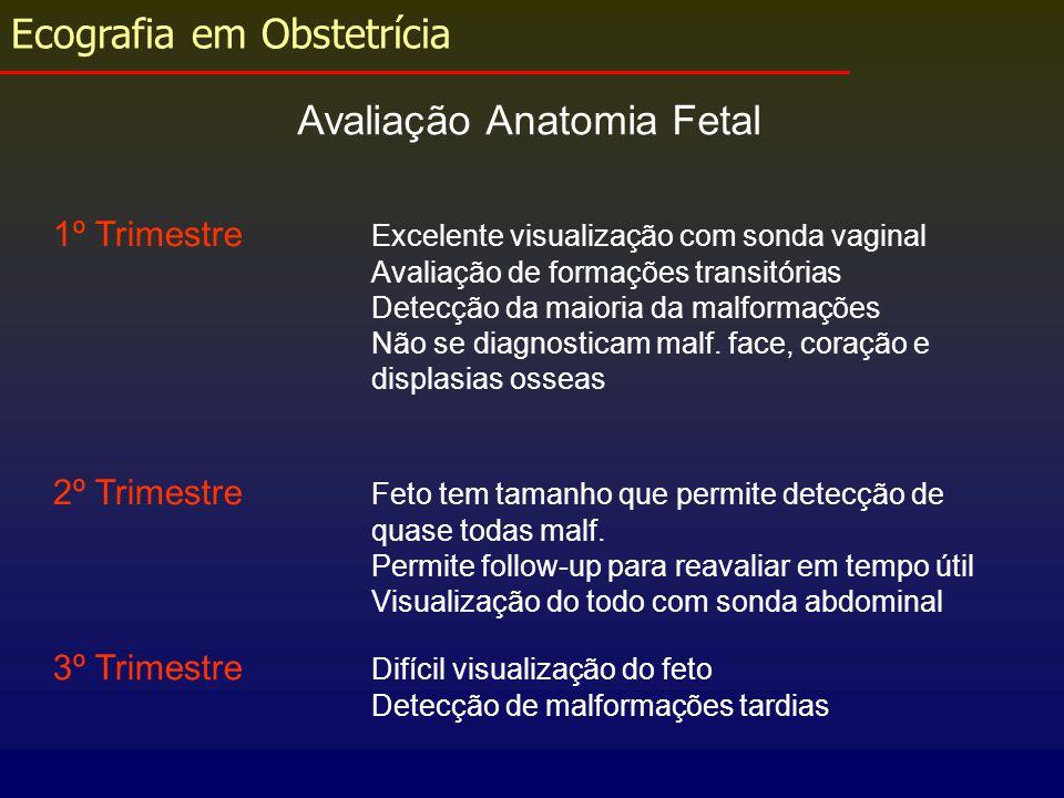 Ecografia em Obstetrícia Avaliação Anatomia Fetal 1º Trimestre Excelente visualização com sonda vaginal Avaliação de formações transitórias Detecção d