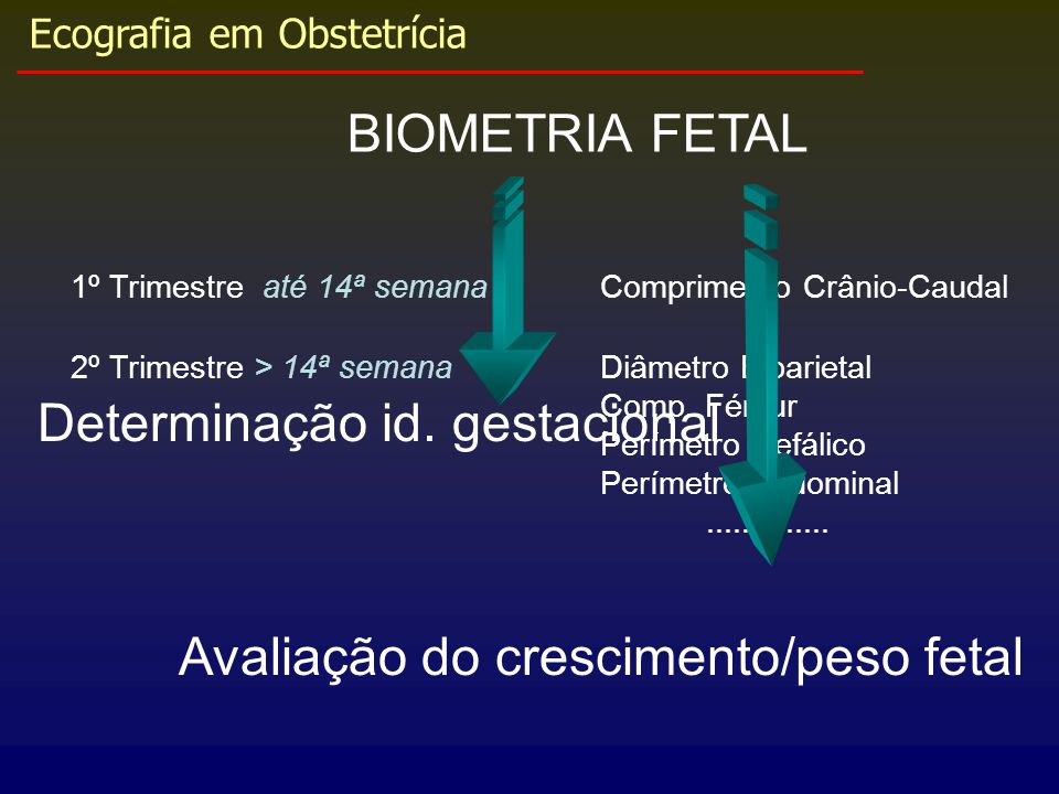 Ecografia em Obstetrícia Determinação id. gestacional BIOMETRIA FETAL 1º Trimestre até 14ª semanaComprimento Crânio-Caudal 2º Trimestre > 14ª semanaDi