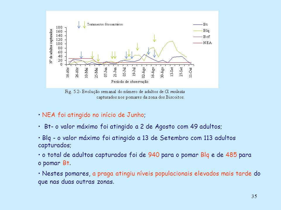 35 NEA foi atingido no início de Junho; Bt- o valor máximo foi atingido a 2 de Agosto com 49 adultos; Blq - o valor máximo foi atingido a 13 de Setemb