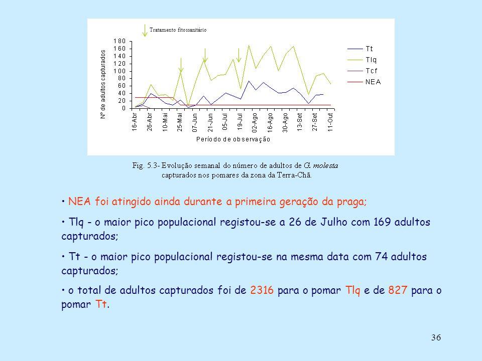 36 NEA foi atingido ainda durante a primeira geração da praga; Tlq - o maior pico populacional registou-se a 26 de Julho com 169 adultos capturados; T