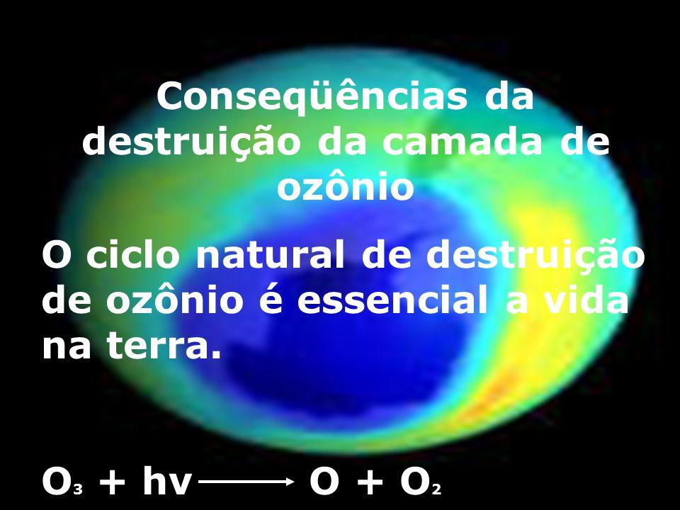 Benefícios dos raios solares Apesar de os raios UV causarem grandes danos a vida terrestre, é utilizado como fonte de energia alternativa. Com o auxil