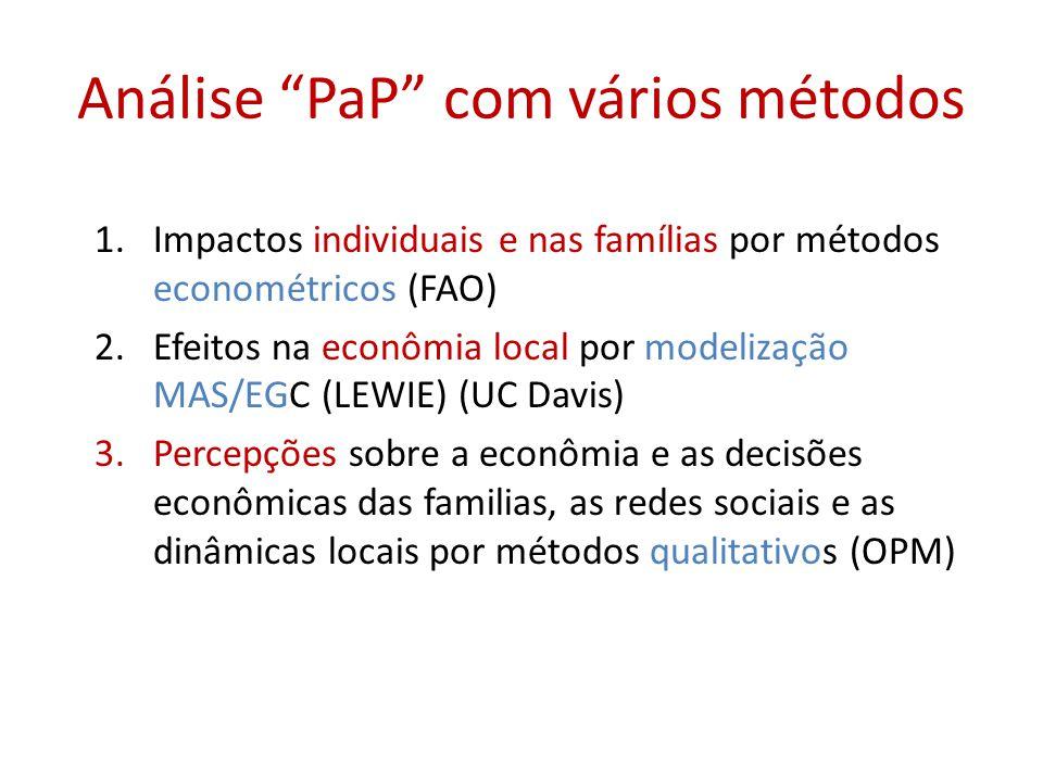 Análise PaP com vários métodos 1.Impactos individuais e nas famílias por métodos econométricos (FAO) 2.Efeitos na econômia local por modelização MAS/EGC (LEWIE) (UC Davis) 3.Percepções sobre a econômia e as decisões econômicas das familias, as redes sociais e as dinâmicas locais por métodos qualitativos (OPM)