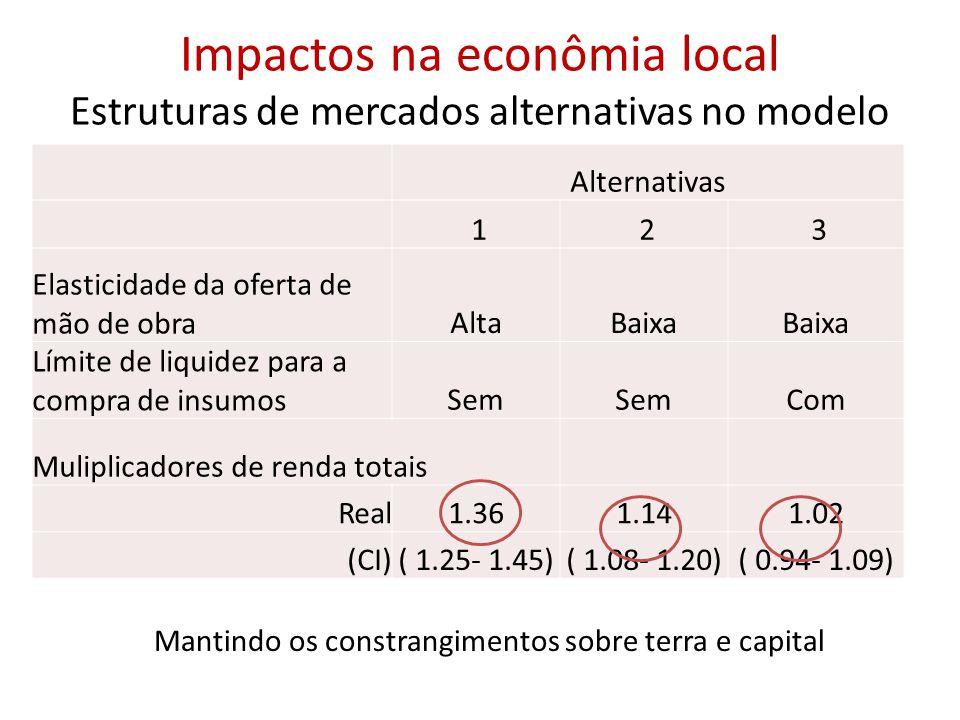 Impactos na econômia local Estruturas de mercados alternativas no modelo Alternativas 1 2 3 Elasticidade da oferta de mão de obraAltaBaixa Límite de liquidez para a compra de insumosSem Com Muliplicadores de renda totais Real1.361.141.02 (CI)( 1.25- 1.45)( 1.08- 1.20)( 0.94- 1.09) Mantindo os constrangimentos sobre terra e capital