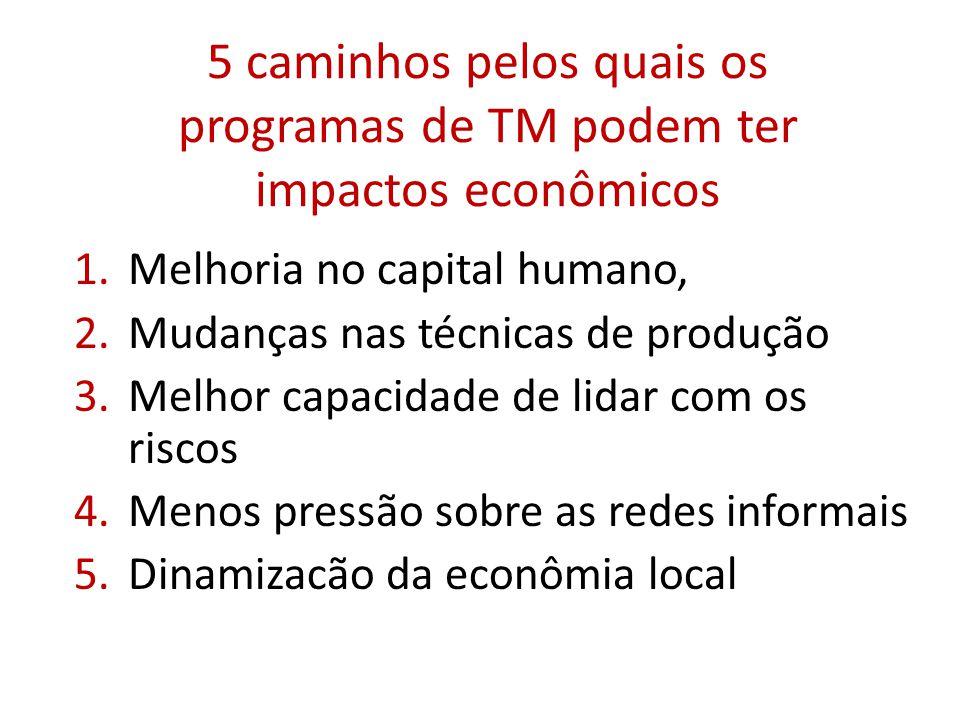 5 caminhos pelos quais os programas de TM podem ter impactos econômicos 1.Melhoria no capital humano, 2.Mudanças nas técnicas de produção 3.Melhor capacidade de lidar com os riscos 4.Menos pressão sobre as redes informais 5.Dinamizacão da econômia local