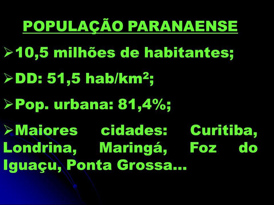 POPULAÇÃO PARANAENSE 10,5 milhões de habitantes; DD: 51,5 hab/km 2 ; Pop. urbana: 81,4%; Maiores cidades: Curitiba, Londrina, Maringá, Foz do Iguaçu,