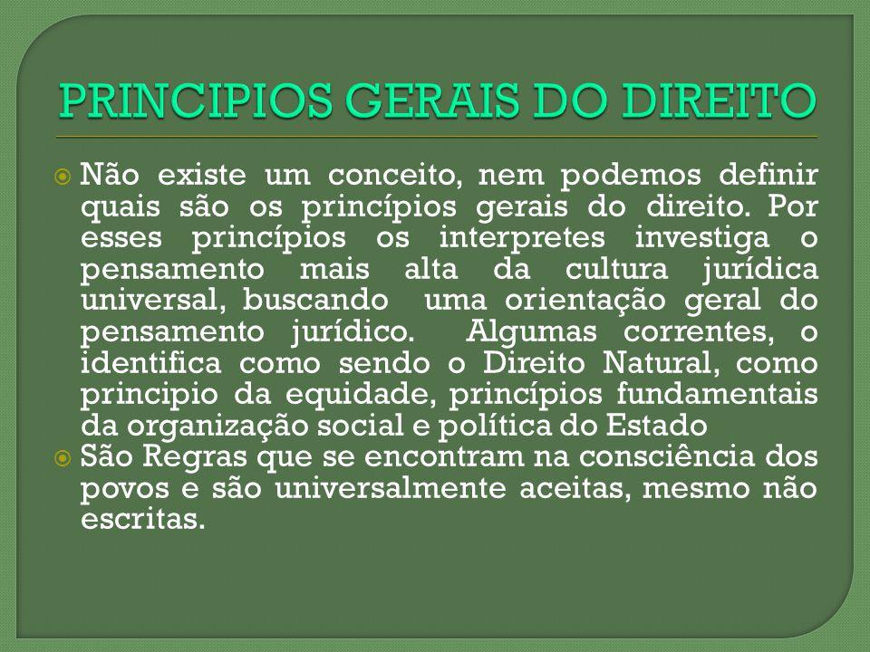 Não existe um conceito, nem podemos definir quais são os princípios gerais do direito. Por esses princípios os interpretes investiga o pensamento mais