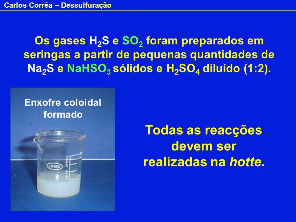 Carlos Corrêa – Dessulfuração Os gases H 2 S e SO 2 foram preparados em seringas a partir de pequenas quantidades de Na 2 S e NaHSO 3 sólidos e H 2 SO