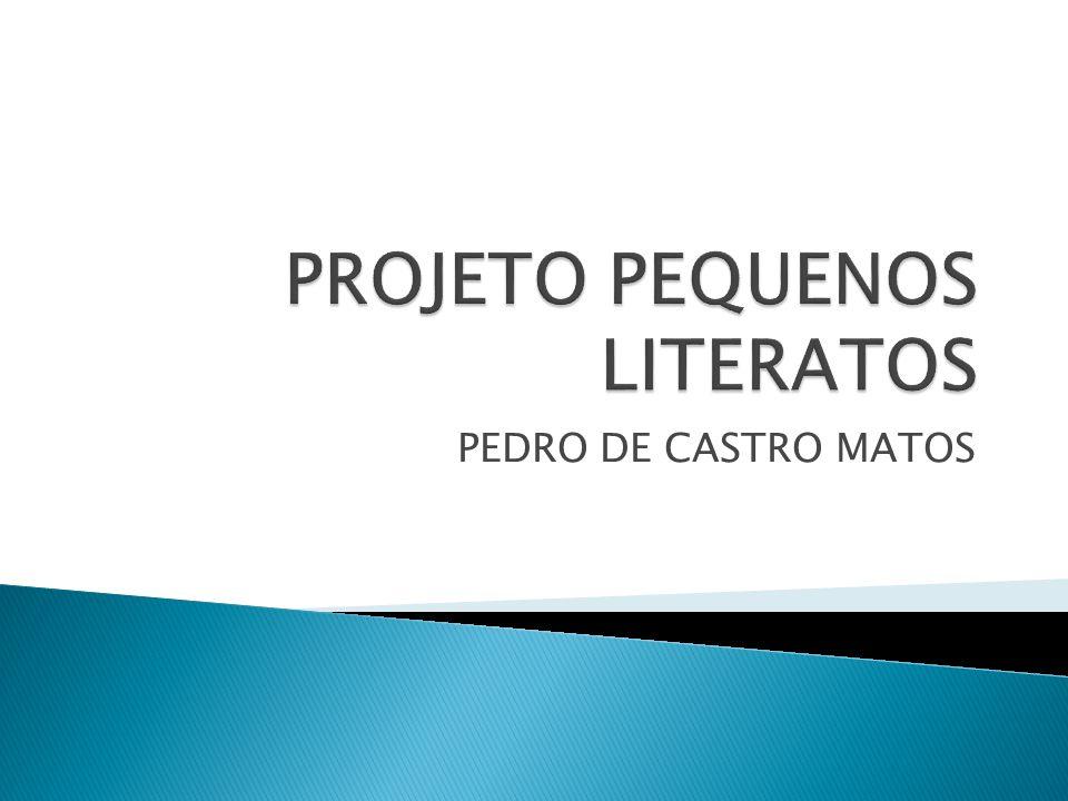 PEDRO DE CASTRO MATOS