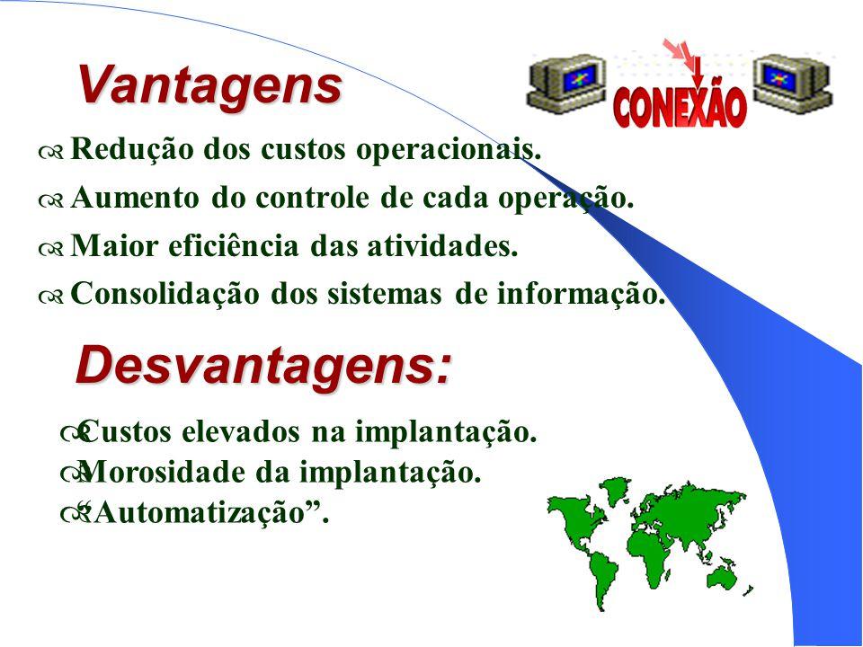 Vantagens Redução dos custos operacionais. Aumento do controle de cada operação. Maior eficiência das atividades. Consolidação dos sistemas de informa