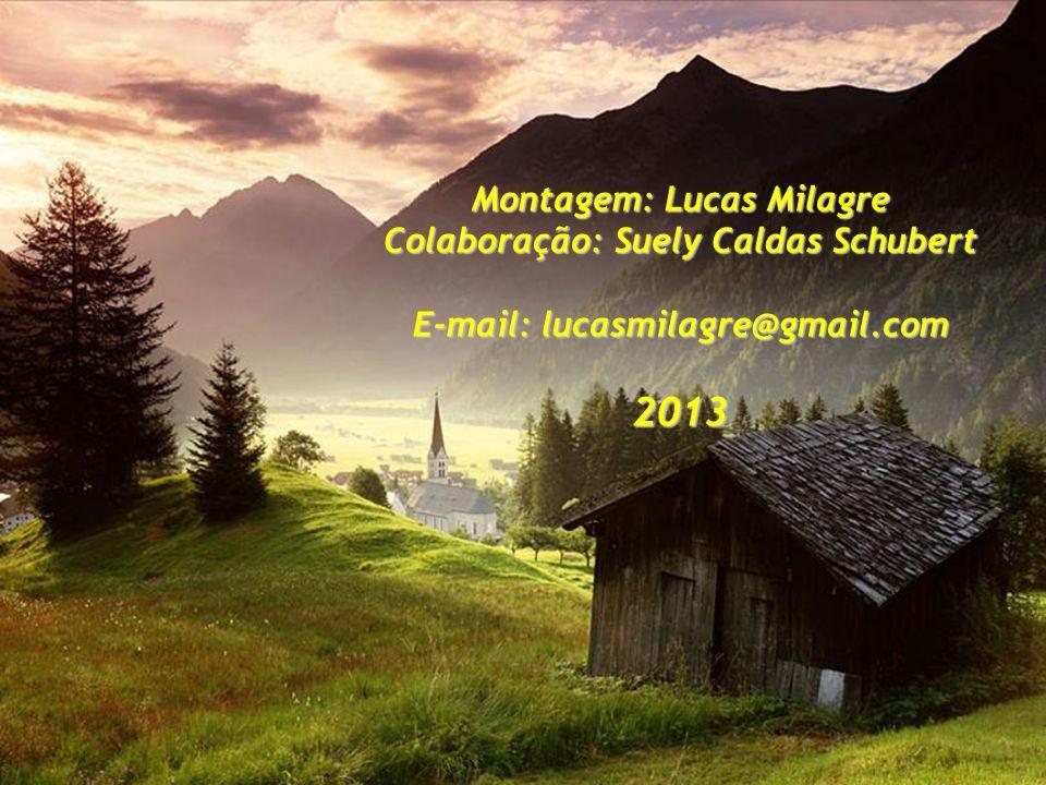 Montagem: Lucas Milagre Colaboração: Suely Caldas Schubert E-mail: lucasmilagre@gmail.com 2013