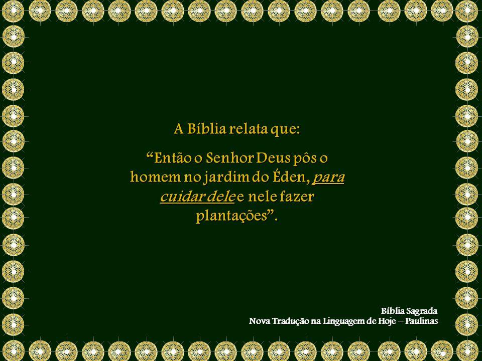 A Bíblia relata que: Então o Senhor Deus pôs o homem no jardim do Éden, para cuidar dele e nele fazer plantações.