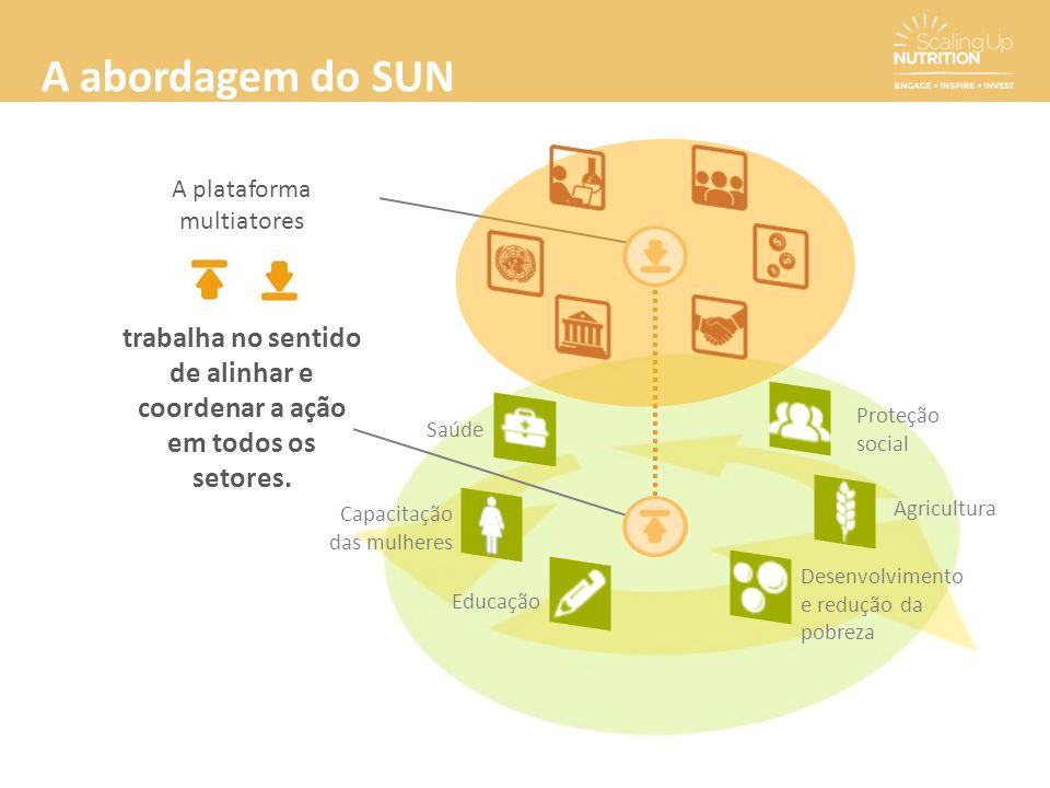 A abordagem do SUN A plataforma multiatores trabalha no sentido de alinhar e coordenar a ação em todos os setores. Capacitação das mulheres Saúde Dese