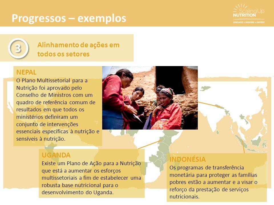 Progressos – exemplos Alinhamento de ações em todos os setores 3 3 NEPAL O Plano Multissetorial para a Nutrição foi aprovado pelo Conselho de Ministro