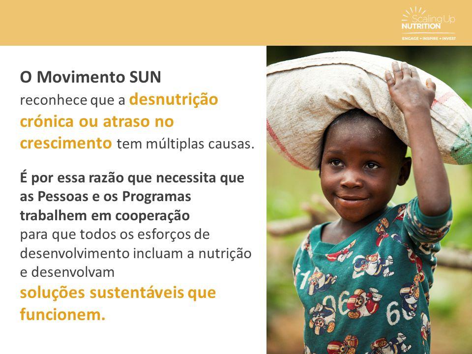 O Movimento SUN reconhece que a desnutrição crónica ou atraso no crescimento tem múltiplas causas. É por essa razão que necessita que as Pessoas e os